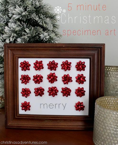Easy Christmas Craft Specimen Art