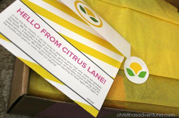 citrus lane card