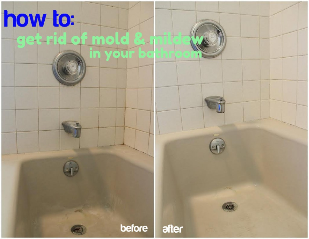 how to get rid of mold and mildew in your bathroom