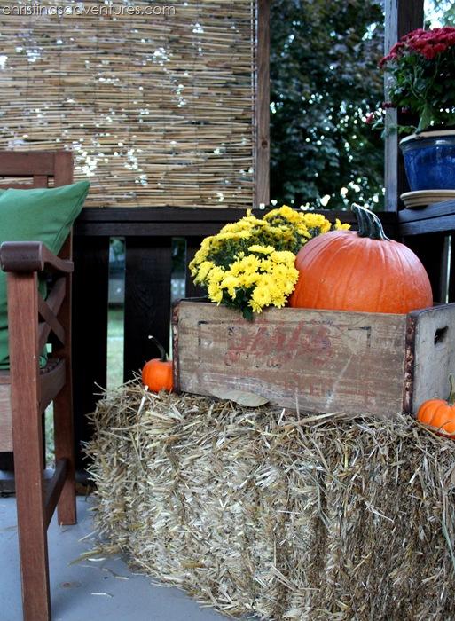 hay bale   old crate   pumpkins   mums