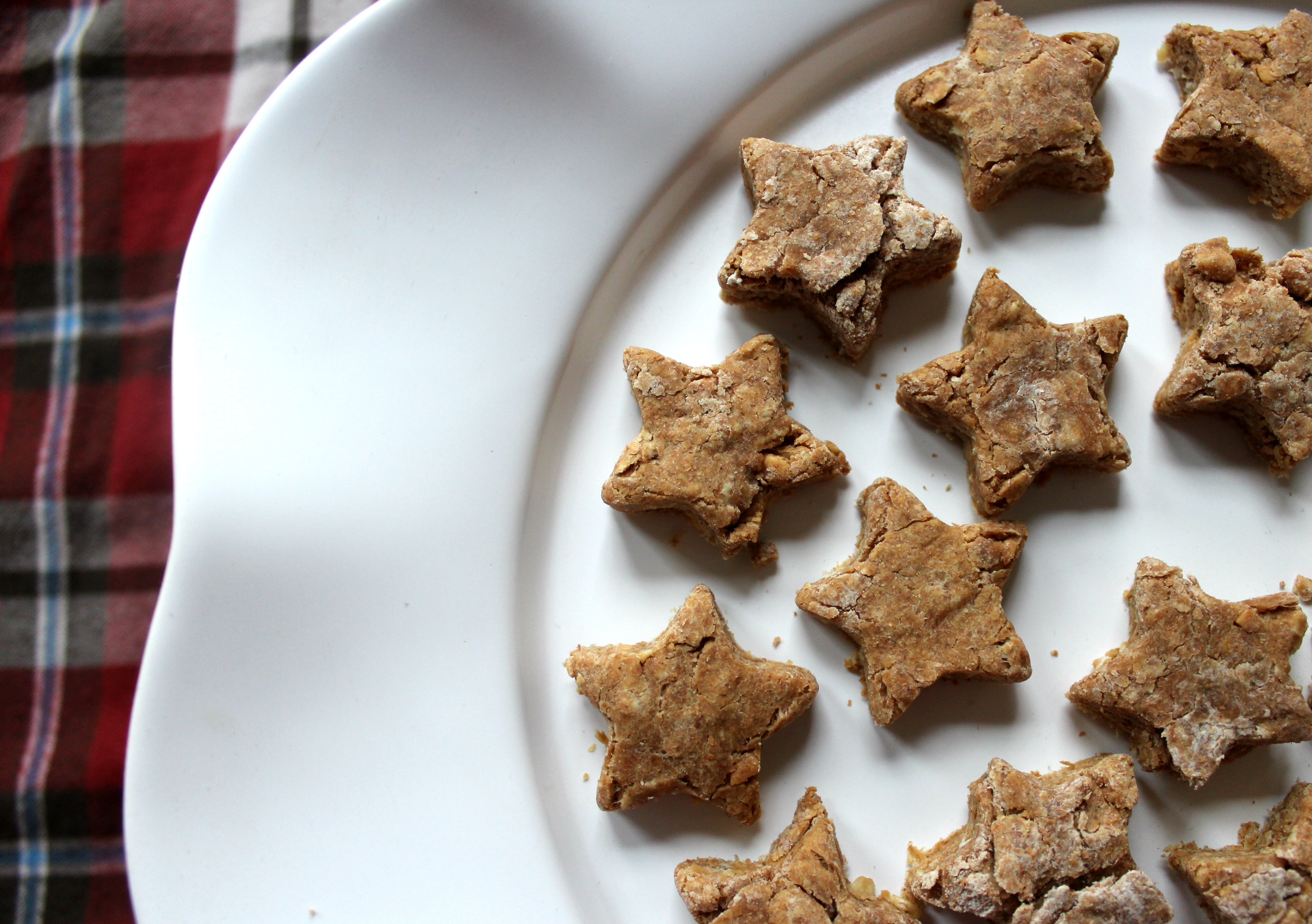 Homemade Dog Biscuits: how to pamper your pet this holiday season