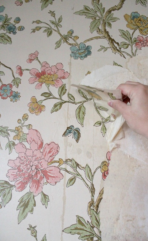 Removing Wallpaper From Plaster Walls