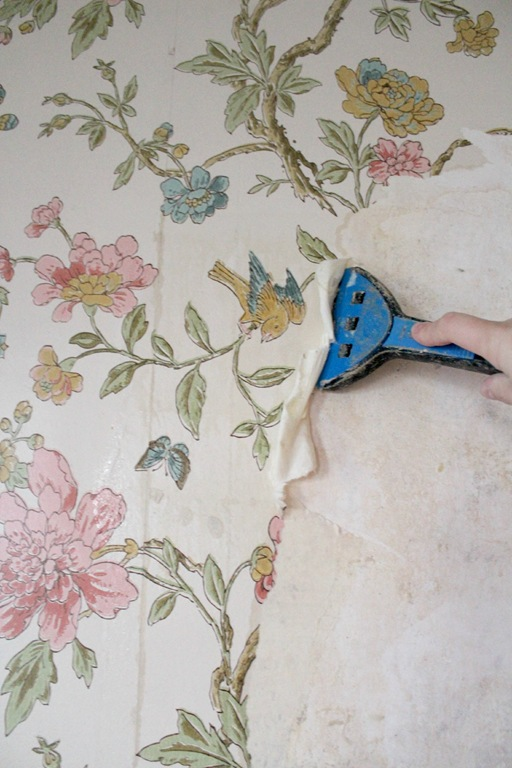 Tips for removing wallpaper from plaster walls (without chemicals ...