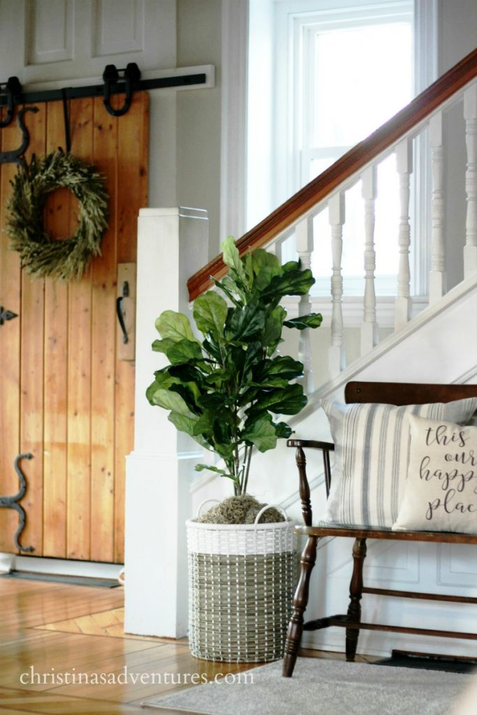 DIY faux fiddle leaf fig