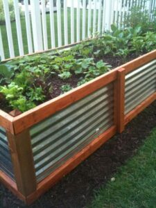 Vegetable Garden Lessons, Plans, and Inspiration