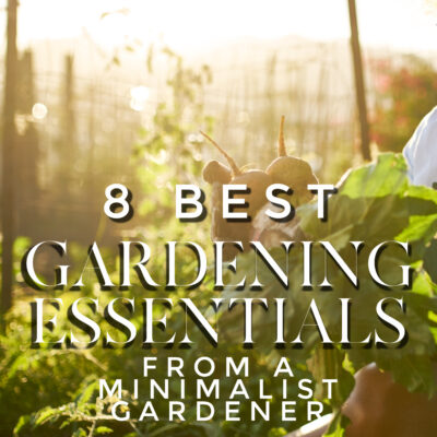 8 gardening essentials (from a gardening minimalist)